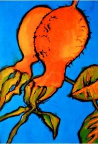 Rosehips ripening
